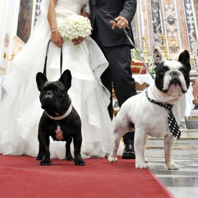 Pet friendly Matrimonio in Villa con cani